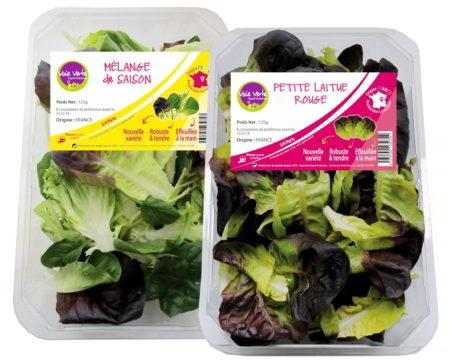 Voie Verte - GMS - Salade prête à rincer
