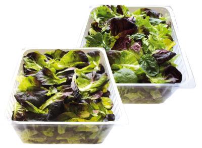 gamme-restauration-salades